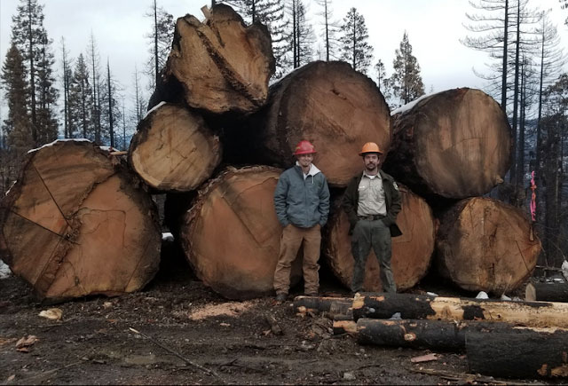 forest service employees stand in front of Slater Fire log deck